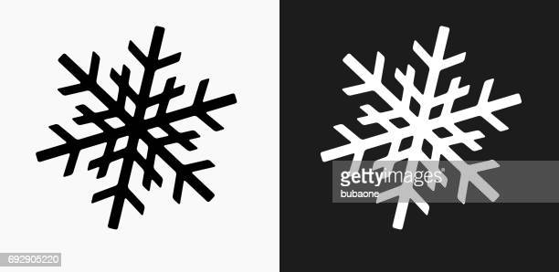 Snowflake Icon on Black and White Vector Backgrounds