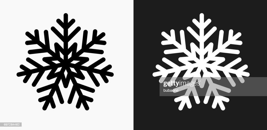 Icone De Flocon De Neige Sur Fond De Vector Noir Et Blanc