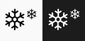 Snowflakes Icon on Black and White Vector Backgrounds