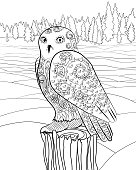 Snowy owl in the tracery style.