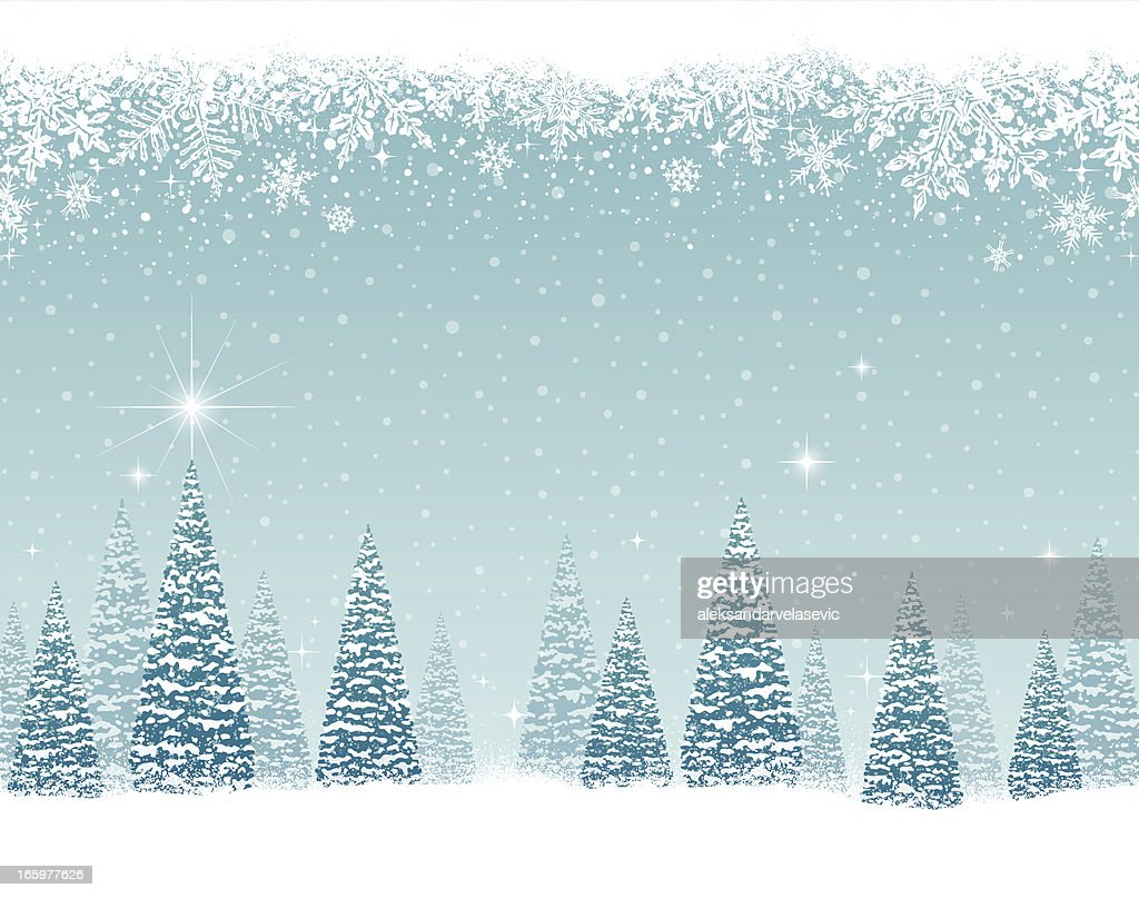 Snowy Winter Trees : stock illustration