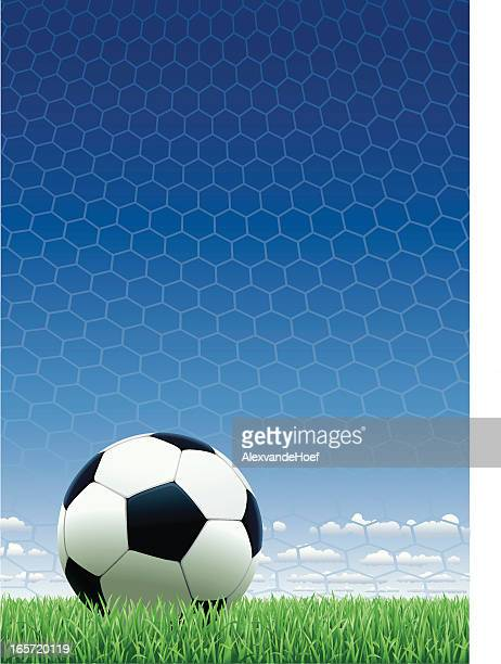 Soccer Ball on Grass with Net and Blue Sky