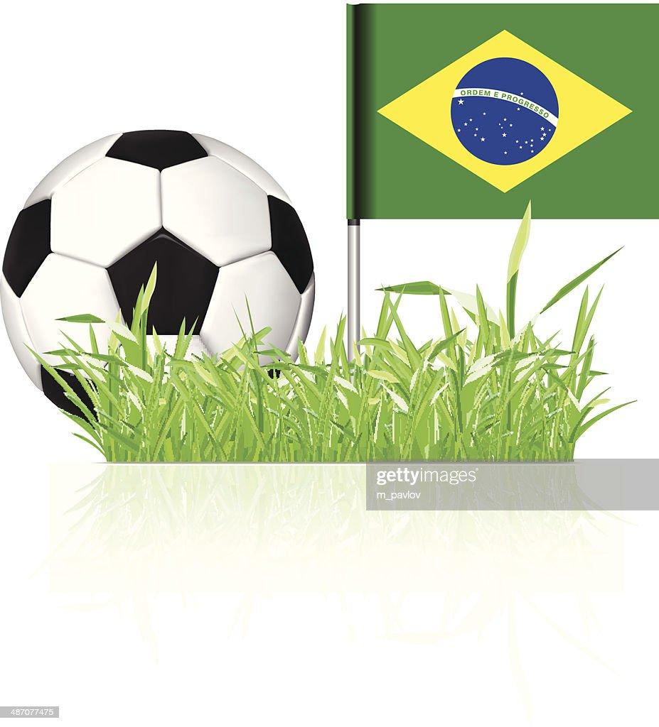 Soccer ball with brasil flag