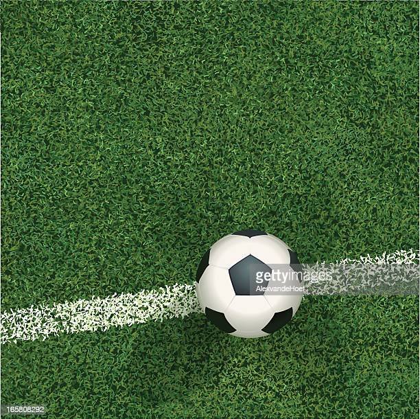 Soccerball and Grass Top View
