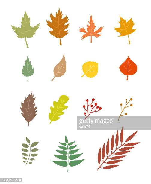 いくつかの秋の葉ストックイラスト - オークの葉点のイラスト素材/クリップアート素材/マンガ素材/アイコン素材
