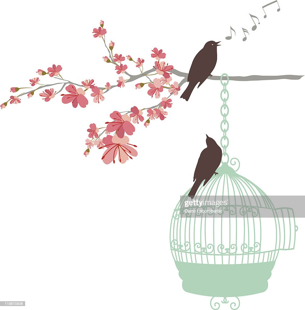 Songbirds Perching on Cherry Blossoms Branch and Aqua Birdcage
