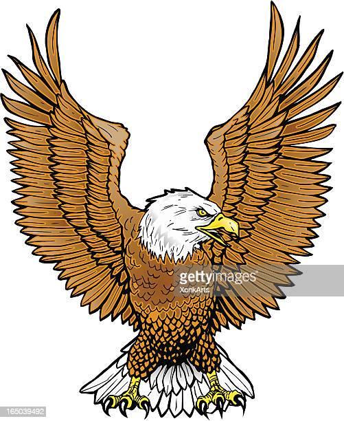 turkey - 翼を広げる点のイラスト素材/クリップアート素材/マンガ素材/アイコン素材