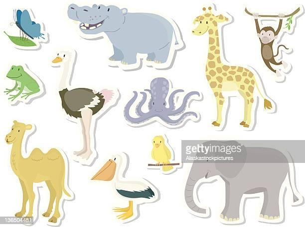 ilustraciones, imágenes clip art, dibujos animados e iconos de stock de sortiment de animales para niños (1/2). - biodiversidad