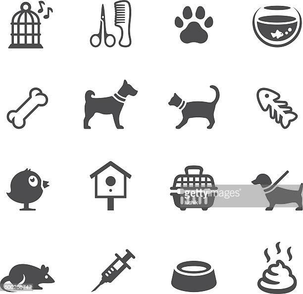 soulico icons - pets - pet equipment stock illustrations, clip art, cartoons, & icons