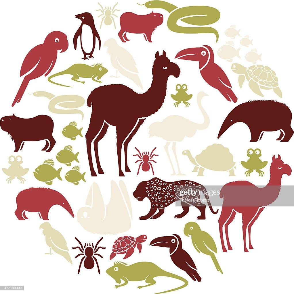 South American Animal Icon Set : stock illustration