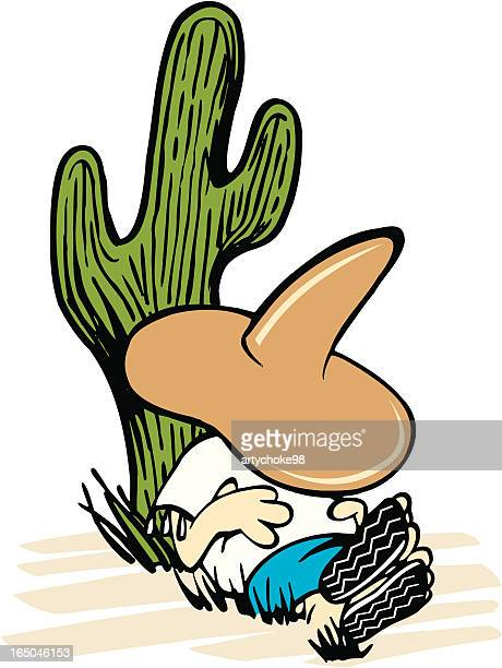south of the border - sombrero stock illustrations