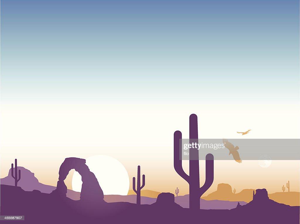 Southwest Cactus Background
