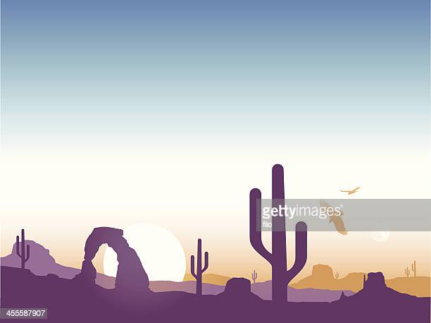 southwest cactus background - natural arch stock illustrations, clip art, cartoons, & icons