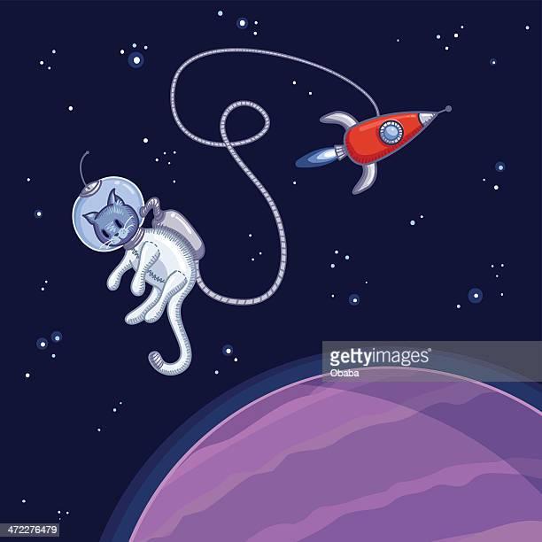 Gato de espaço