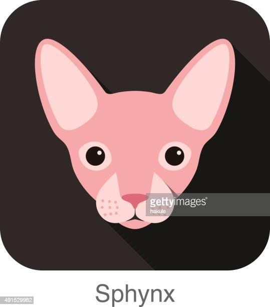 illustrations, cliparts, dessins animés et icônes de la race de chat sphynx, face à l'icône de dessin animé design - chat profil