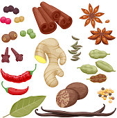 Spices and herbs icons set illustration