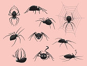 Spider Black Poses Cute Cartoon Vector Illustration