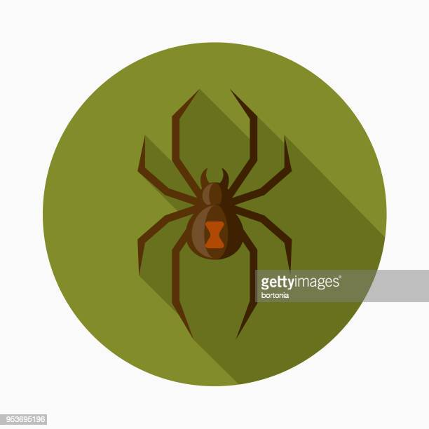 spider flat design halloween icon with side shadow - spider stock illustrations