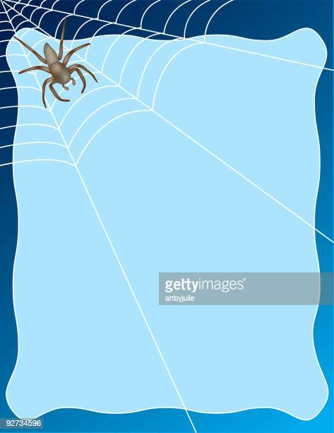 spider on web with text area
