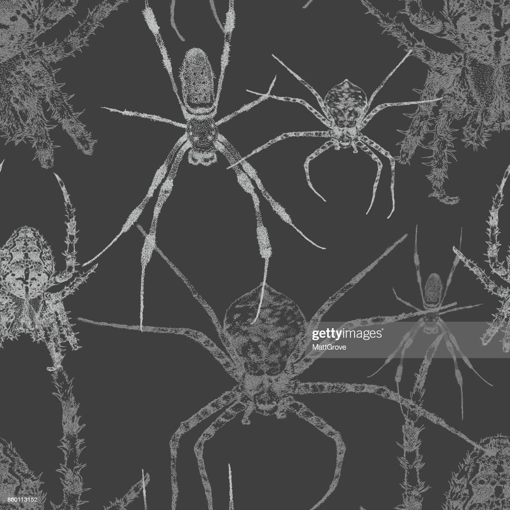 Spider Repeat Pattern Dark
