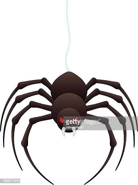 spider - black widow spider stock illustrations, clip art, cartoons, & icons