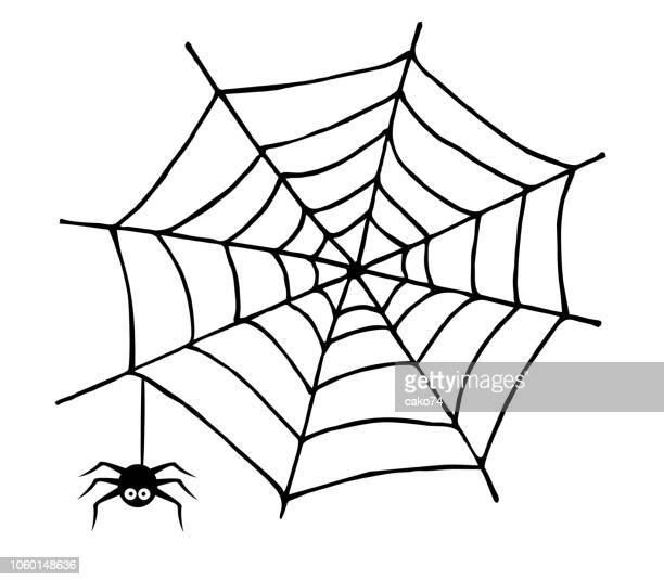 spider web and spider - spider stock illustrations