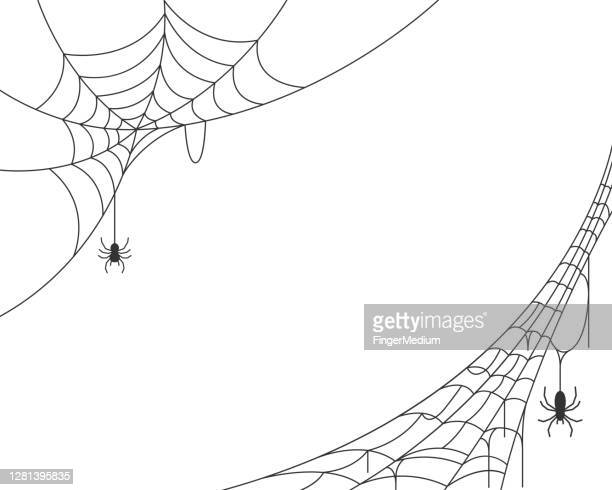 spider web background - halloween stock illustrations