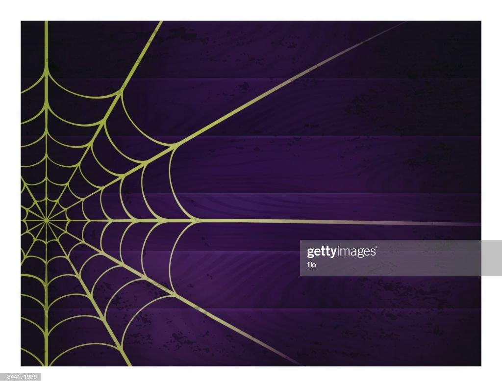 Spider Web Background : Vector Art