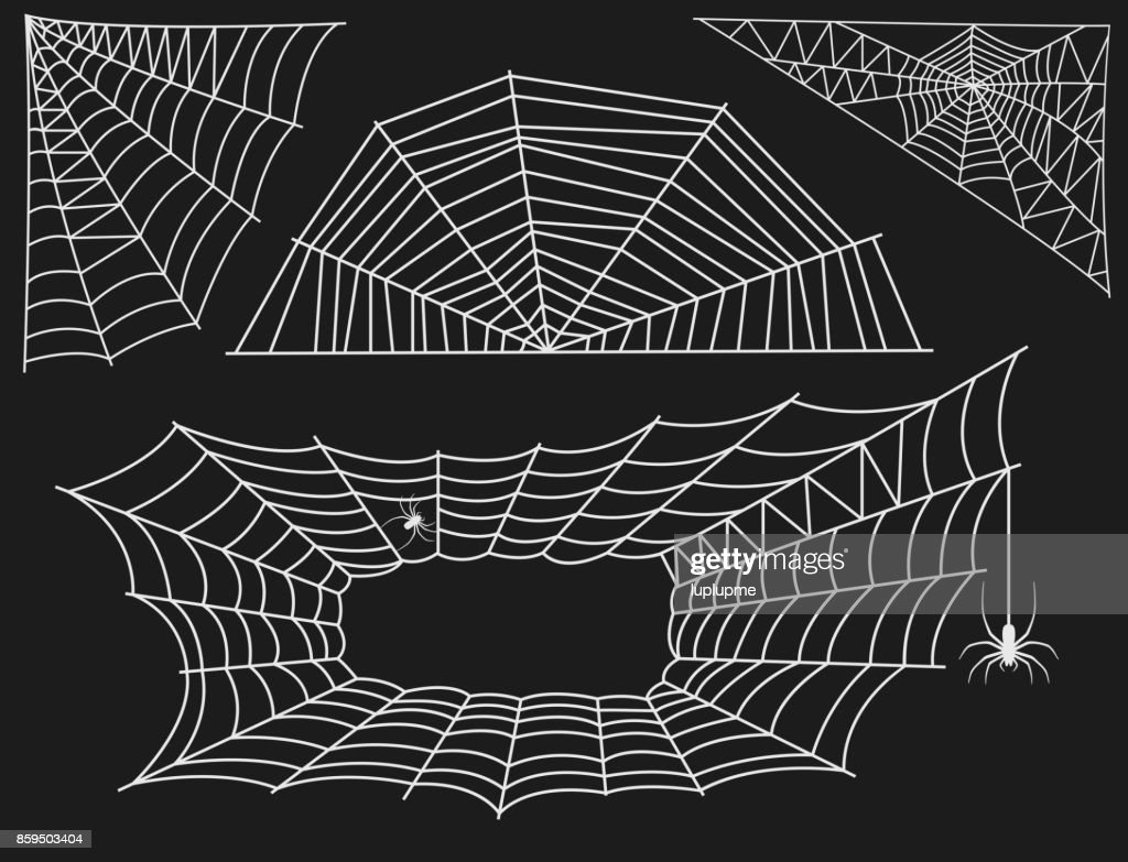 Spider web silhouette arachnid fear graphic flat scary animal design nature insect danger horror vector icon