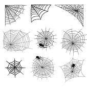 Spiders and spider web silhouette spooky nature halloween element vector cobweb decoration fear spooky net