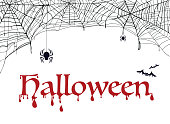 Spiderweb, bat and spider with word halloween. Decoration for party