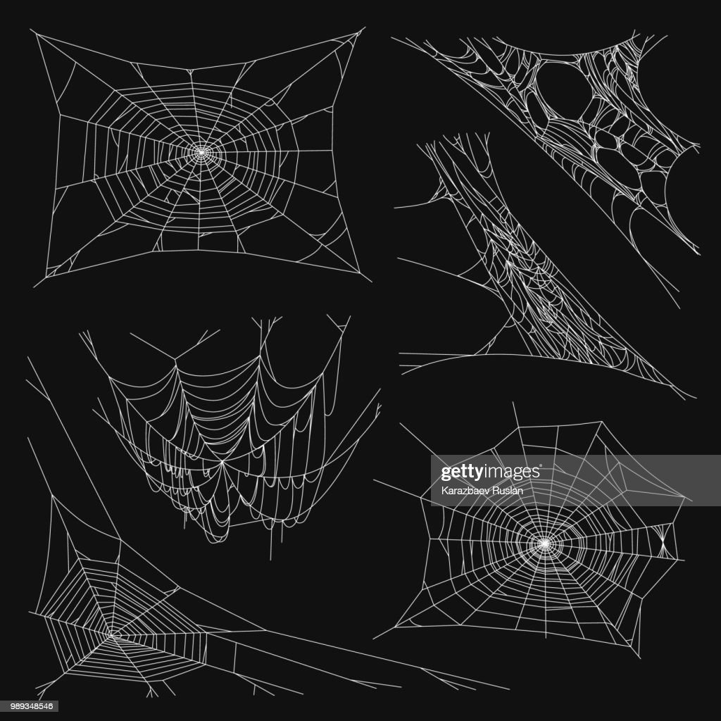 Spiderweb Set for Halloween Design