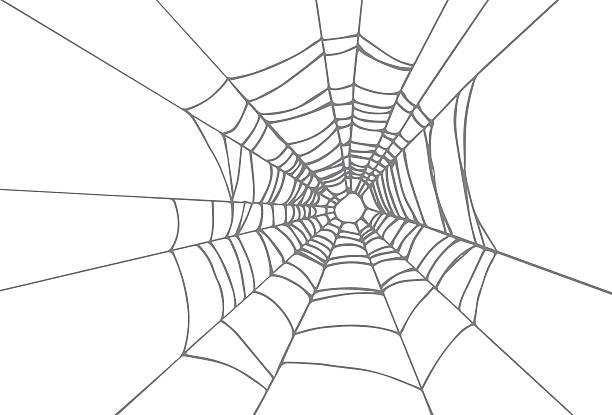 Free spider web Images, Pictures, and Royalty-Free Stock