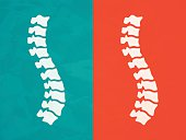 Spine