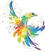 Splash fantasy bird