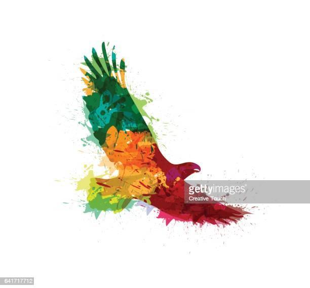 splashed eagle - bird of prey stock illustrations, clip art, cartoons, & icons