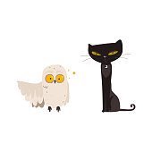 Spooky black cat and white owl, Halloween objects