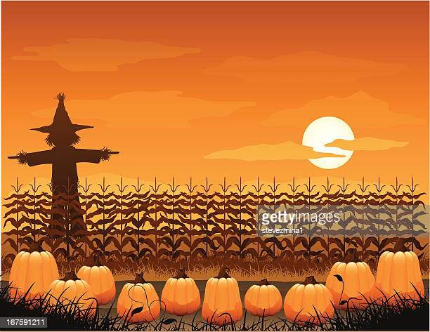 spooky pumpkin patch - corn crop stock illustrations, clip art, cartoons, & icons