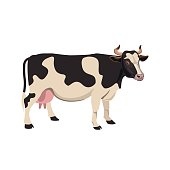 Spotted cow vector