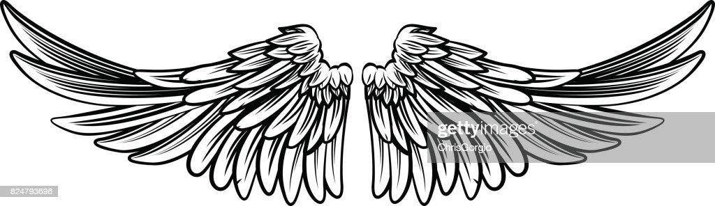 Spread Pair of Angel or Eagle Wings