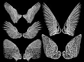 Spread set of wings. Hand drawn etched woodcut vintage style pair of wing collection vector.