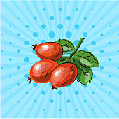 Sprig with wild rose berries on a blue background, lines,dots. Vector illustration. Hand drawn by style pop art