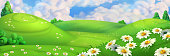 Spring background. Green meadow with daisies vector illustration