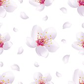 Spring background seamless pattern with sakura blossom