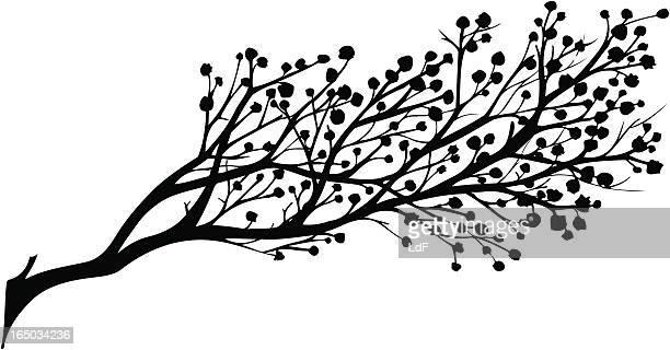 ilustraciones, imágenes clip art, dibujos animados e iconos de stock de flores de primavera - cherry tree