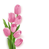 Spring card with pink tulips