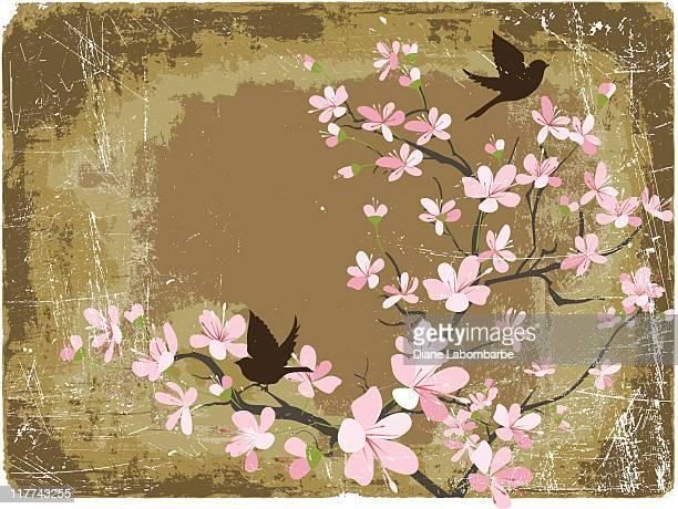 Fleurs de cerisier printanières et Sparrows sur fond Grunge marron