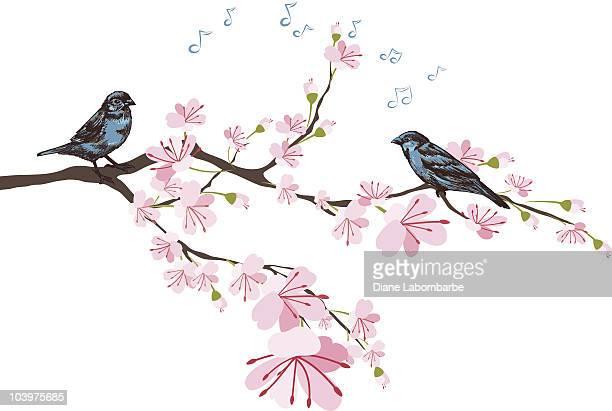 春ともなれば桜&スケッチブルースパローズに佇む店