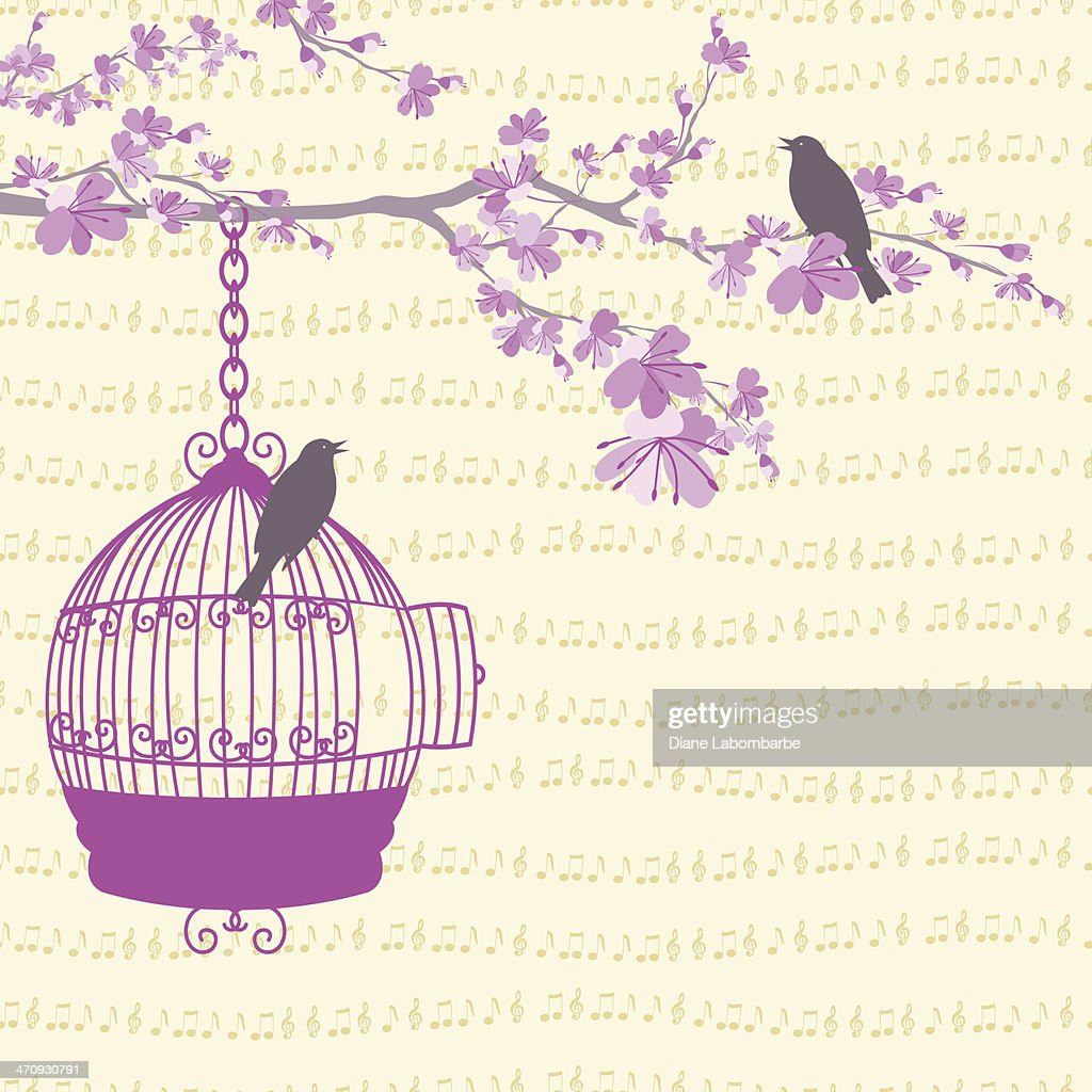 Spring Cherry Blossoms with Birds & a Cage