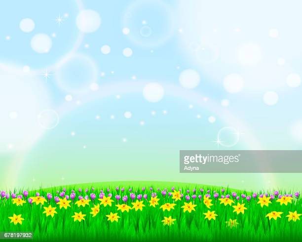 spring flower background - narcissus mythological character stock illustrations, clip art, cartoons, & icons